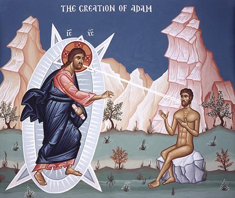 adam creation iconic