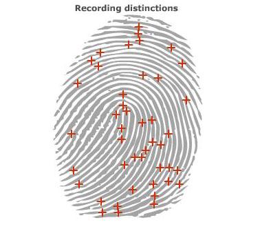 fingerprint 1b