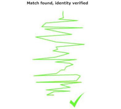 fingerprint 4